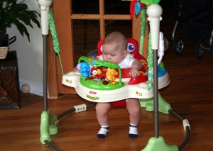 Rainforest Jumperoo by Fisher Price